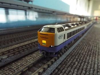 DSCF9107-1.jpg
