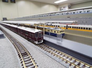 DSCF9270-1.jpg
