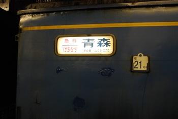 DSC_0203-1.jpg