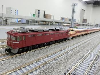 CIMG1222-1.jpg