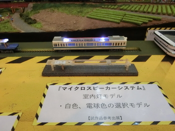 CIMG5979.JPG