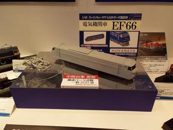DSCF1091-1.jpg