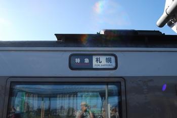 DSC_0037-1.jpg