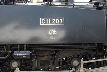 DSC_0083-1.jpg